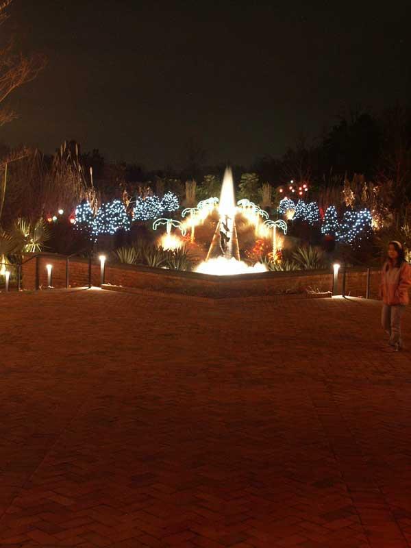 Daniel Stowe Botanical Garden Holiday Lights